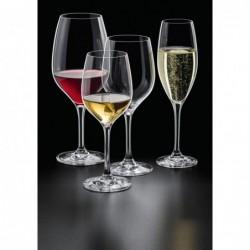 EDITION Kieliszki do szampana 150 ml - 6 szt.